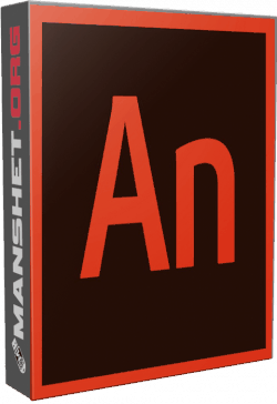 Adobe Animate CC and Mobile Device Packaging CC 2019 19.2.1.408